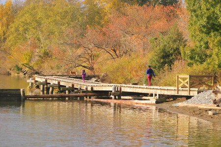 People enjoy a scenic walk on a wooden platform that straddles a river during the Fall season.