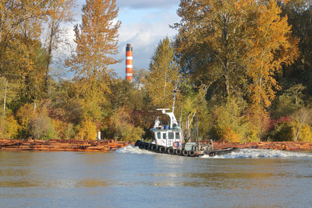 An active tug boat moving right to left during the Fall months.