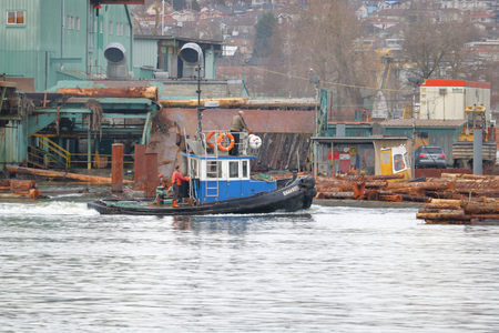 A tug boat crew works on Vancouver, Canadas Fraser River sorting logs for processing on a small tug boat on January 10, 2018.