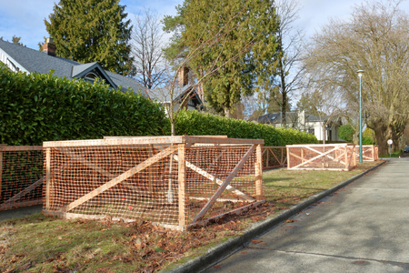 City trees on a boulevard are protected by a large, enclosed fence to prevent damage during construction.