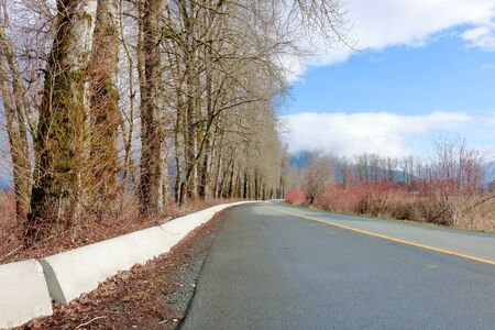 Low angle rural road and cement black barriers used to align the side of the pavement where tall trees stand. 版權商用圖片