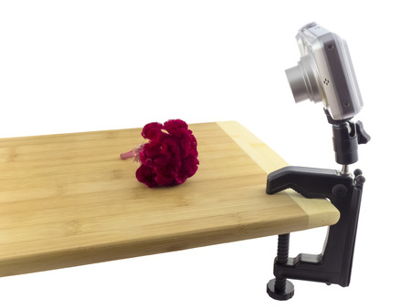 Compact digital camera on a  table c-clamp  tripod  shot red flower photo