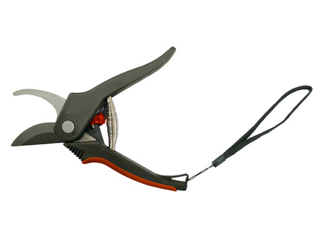 secateurs: Open garden secateurs, isolated on white background