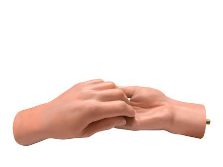 mannequin: Mains de poup�e mannequin en plastique isol� sur fond blanc