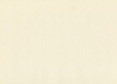 Watercolor paper texture, abstract blank beige material