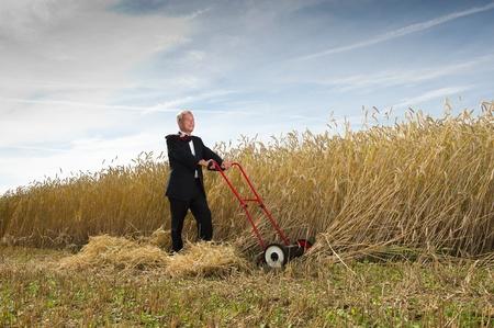 Zakenman het oogsten van de vruchten van zijn arbeid Stockfoto