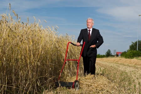 biofuel: Businessman surveying a challenge with courage and determination as he assesses a large field of ripe golden wheat ready for harvesting with just a hand mower at his disposal