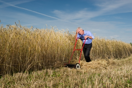 An exhausted senior businessman pauses for a breather while mowing and harvesting a field of ripe golden grain with a manual push type lawnmower, conceptual of business perseverance and determination