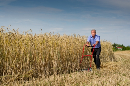 Senior businessman embarking on a new challenge as he starts to harvest his field of ripe golden grain using just a push type manual lawnmower filled with determination to succeed photo