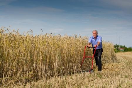 Senior zakenman het aanbreken van een nieuwe uitdaging als hij begint aan zijn gebied van rijpe gouden graan te oogsten met behulp van slechts een push-type handmatige grasmaaier gevuld met vastberadenheid om te slagen Stockfoto