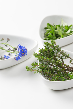 Assorted edible flowers and herbs in individual dishes with focus to springs of fresh rosemary , an aromatic pungent herb used in cooking to flavor meat dishes
