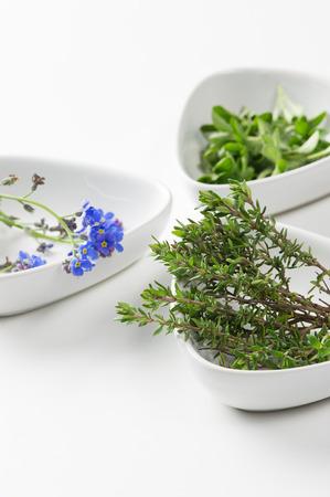 Diverse eetbare bloemen en kruiden in afzonderlijke gerechten met de nadruk op bronnen van verse rozemarijn, een aromatische prikkelende kruid gebruikt in de keuken om de smaak vleesgerechten Stockfoto