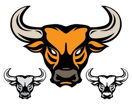 toros bravos: cabeza de toro aislado en blanco