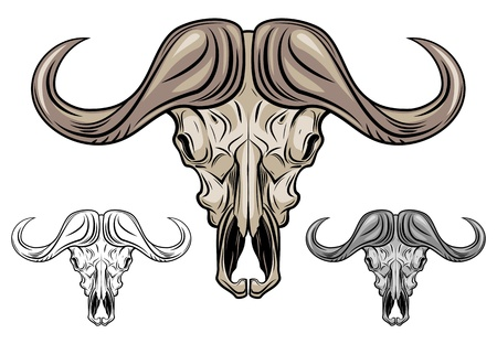 Buffalo skull isolated on white, vector illustration Stock Photo