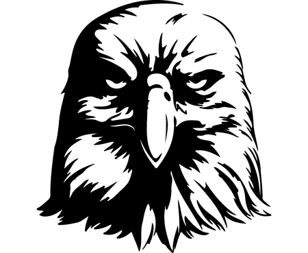 Angry Eagle. Digital Drawing  イラスト・ベクター素材