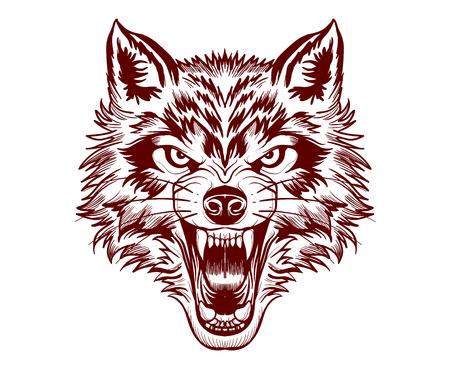 Fierce wolf face. 向量圖像
