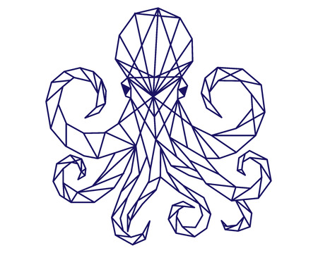 Polygonal octopus. Ilustrace