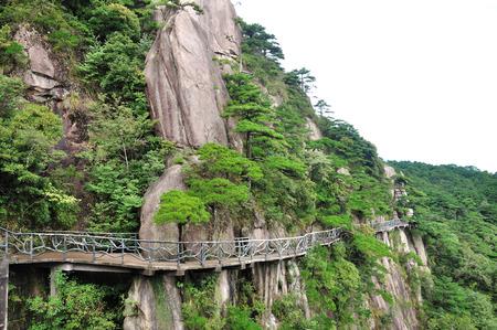 high sierra: San Qing mountain plank
