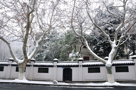 winter: Winter Editorial