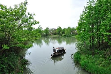 wetland: Hangzhou xixi wetland landscape