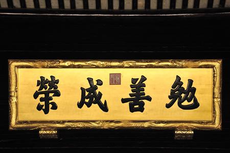 placa bacteriana: la placa chino