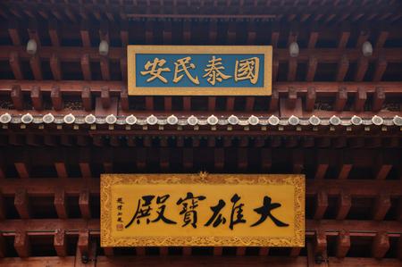 placa bacteriana: la placa templo