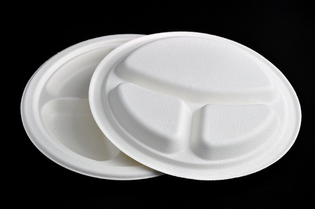 tableware: Paper products tableware