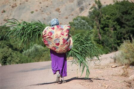 This woman is carrying here harvest, some maize, on her back.