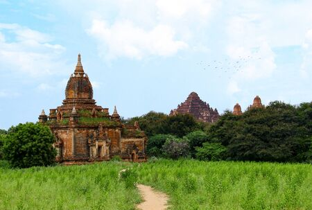 Ancient temples in green vegetation in Bagan, Myanmar / Burma. Фото со стока