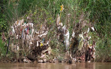 After high tide, the shore of Dokhtawady River in Myanmar is always full of plastic trash, which is floating on the river towards the ocean. It gets caught at the trees cranches and stays there till i 写真素材