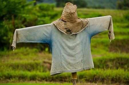 Thaise vogelverschrikker Stockfoto