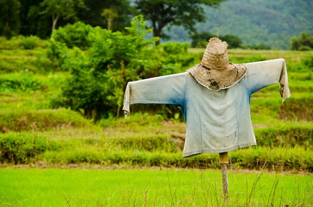Thai Scarecrow Stock Photo