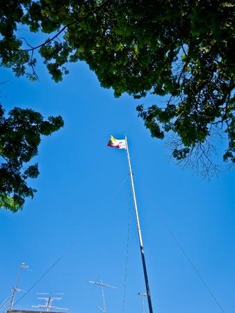 Flag on blue sky with tree flame photo