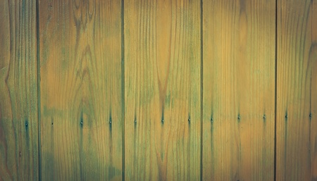 pattern of the old door Wood texture Stock Photo - 11783604