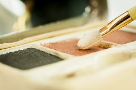 earth tone: Make up blush on powder earth tone color on white background Stock Photo
