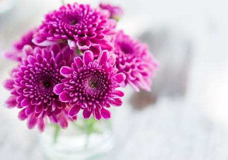 close up violet aster bloem in glas op tafel