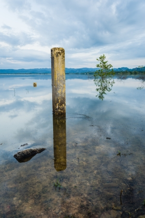 cement pole: Cement Pillar tree and stone in water in morning time
