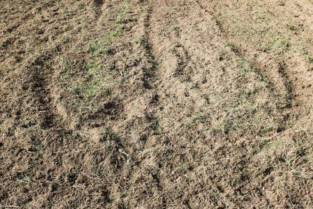 droog gras en vuil bodem detail patroon textuur natuur achtergrond Stockfoto
