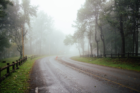 Road through forest with fog and misty countryside in thailand raining day Stock Photo