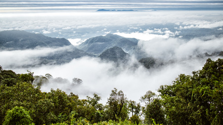 mountain with misty fog in thailand morning time