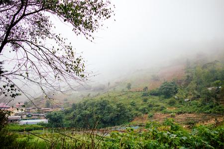 platteland in Thailand met nevelige vroege mist in de ochtend de tijd Stockfoto