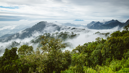 berg met mistige mist in Thailand ochtendtijd