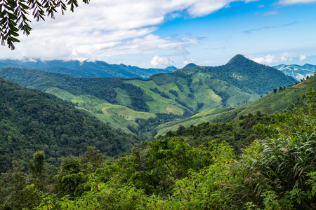landscape of mountain view forest of thailand in daylight time Stock Photo