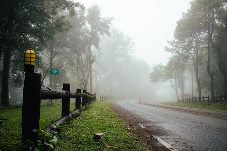 Weg door bos met mist en mistig landschap in Thailand regent dag Stockfoto - 47856715