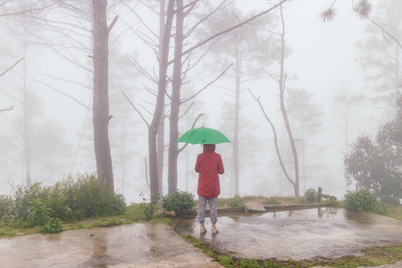 woman wear red coat open an green umbrella turn back with fog and misty in rainingday