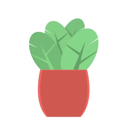 A brown pot with a green plant to decorate the interior or the street. Isolated object. Vector cartoon flat illustration. Иллюстрация