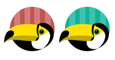 Head of an exotic toucan bird with a black background. Colorful vector isolated illustration about animals for emblem. 矢量图像