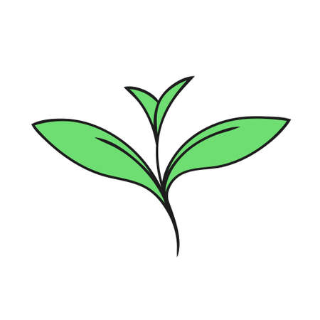 Green sprout of a plant on a white background. Ecology symbol. Vector isolated outline illustration