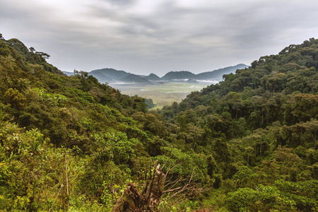 attend: The sky and the mountains attend the rainforests when the rainforests composes a beautiful view of its all mystery. Stock Photo