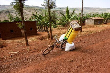 earth road: Banana field and a bicycle on the red earth road. There are big sacks on bicycle.